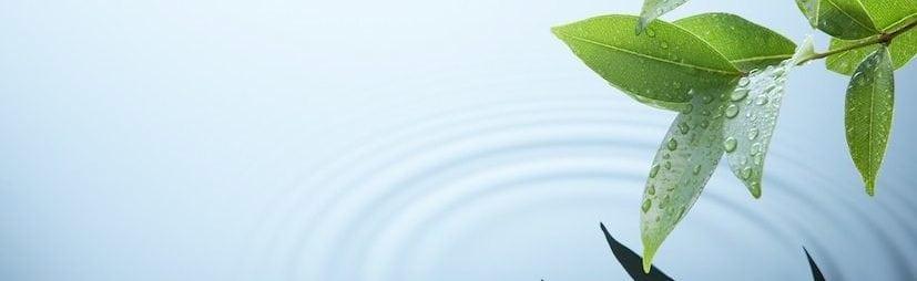 Qigong - Ruhe und Wirkung